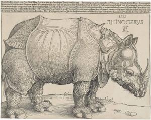"""Dürer's Rhinoceros, 1515"" by Albrecht Dürer - Christie's. Licensed under Public Domain via Wikimedia Commons - http://commons.wikimedia.org/wiki/File:D%C3%BCrer%27s_Rhinoceros,_1515.jpg#mediaviewer/File:D%C3%BCrer%27s_Rhinoceros,_1515.jpg"